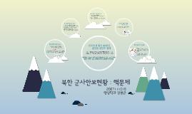 북한 3차 핵실험과 Buffer Zone, Korea