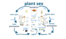 Bio Plant Sex Honors New