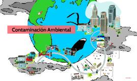 Copy of Copy of Historia de la contaminacion