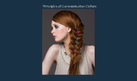 POC Hair Culture Project