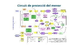 Circuit de protecció del menor