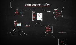 Mitokondriális Éva
