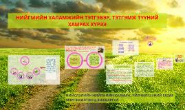 Монгол улсын Нийгмийн халамжийн тухай хууль нь 1995 онд батл