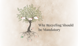 should recycling where possible be necessary articles
