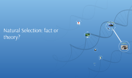 Natural Selection: fact or theory?