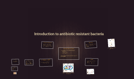 Copy of How does bacteria work?