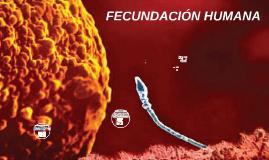 Copy of Fecundación humana