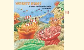 Symbiosis - Clownfish and Sea Anemone