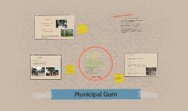 municipal gum Essays - largest database of quality sample essays and research papers on municipal gum oodgeroo noonuccal.