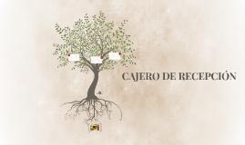 CAJERO DE RECEPCIÓN