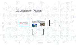 Lab: Biodiversity -- Animals