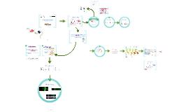 Dengue virus sero-cross-reactivity drives ADE of infection with ZIKAV