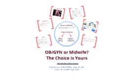 Midwifery (FSW 381 Workshop)