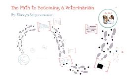Career Paths: Veterinarian