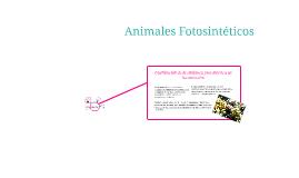 Animales Fotosintéticos