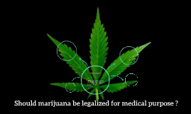 should marijuana be used for medical purpose ?