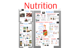 Copy of AP Bio- Regulation 4: Nutrition