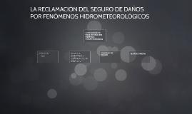LA RECLAMACION DEL SEGURO DE DAÑOS POR FENOMENOS HIDROMETEOR