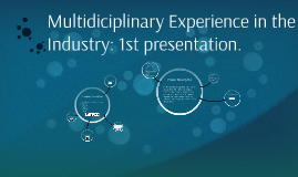 Multidiciplinary experience in the industry