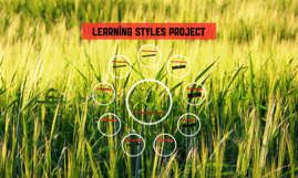Learning Styles Project