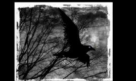 American Romanticism/Gothic