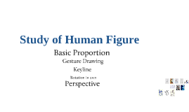 Copy of Human Figure
