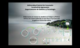 Copy of Elaboración de manual de Análisis de Peligros y Puntos Críticos de Control (HACCP) en una línea de producción de galleta