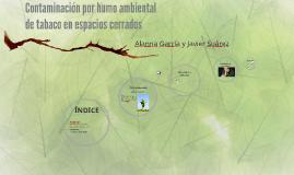 Copy of Contaminación por humo ambiental