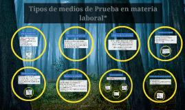 Copy of Tipos de medios de Prueba en materia laboral