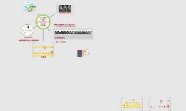 Tutoriel Prezi : représentations variées dans le plan