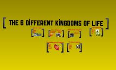 6 Kingdom's