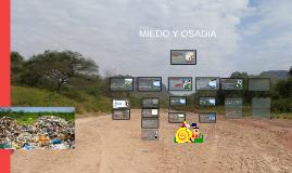 Copy of MIEDO Y OSADIA