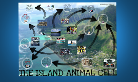 THE ISLAND ANIMAL CELL