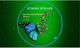 ETAPAS VITALES