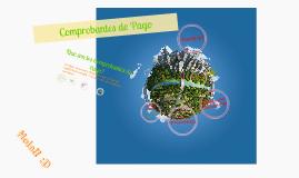 Copy of Comprobantes de Pago