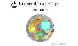 La microbiota de la piel humana