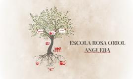 Copy of ESCOLA ROSA ORIOL ANGUERA