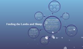 Feeding the Lambs and Sheep