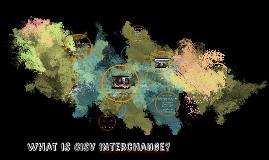 RMD CISV - Interchange
