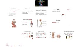 Osteología y Artrología de Columna Vertebral y Cráneo Química y farmacia 2015/02