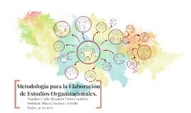 Metodologia Para La Elaboración de Estudios Organizacionales.