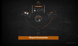 Hopoe Enterprise