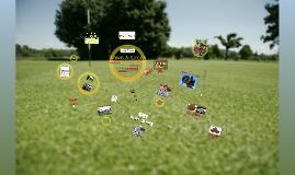 Lawn & Green C.I. GmbH - Produkte