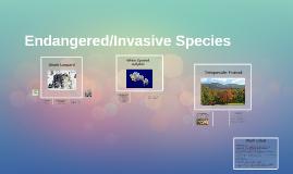 Endangered/Invasive Species