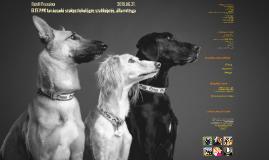 ELTE PPK államvizsga - A kutya mint tünethordozó
