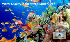 Water Quality in the Great Barrier Reef