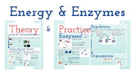 BioChemistry CH 3: Energy & Enzymes