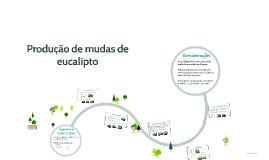 Produção de mudas de eucalipto