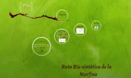Ruta Bio-sintetica