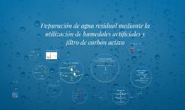 Depuración de agua residual mediante la utilización de humed
